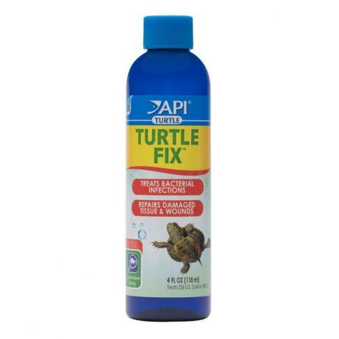 API Turtle Fix