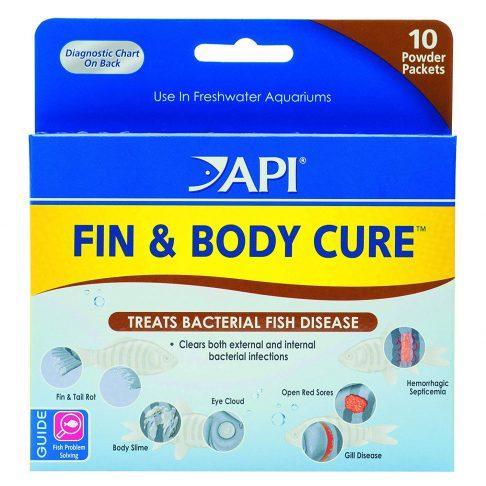 API Fin & Body Cure