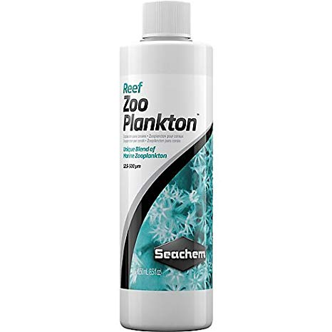 zoo plankton