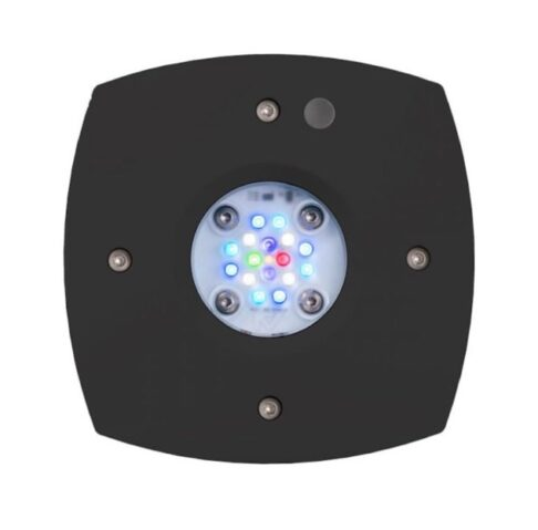 Aqua Illumination (AI) Prime 16 black reef light sri lanka marine
